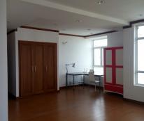 Căn hộ Hoàng Anh Gold House cho thuê 2PN, đầy đủ nội thất 11triệu/tháng
