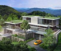 Bán đất nền dự án tại  Phường Bãi Cháy, Hạ Long, Quảng Ninh diện tích 250m2 giá 15 Triệu
