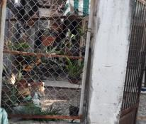 Bán 2 căn nhà cấp 4 liền kề, hẻm đường Số 8 thông đường Số 2, phường Tăng Nhơn Phú B, giá 3.25 tỷ
