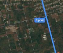 Bán Rẫy xen canh Tiêu, Cam, Bưởi, Tại thôn 4 xã Hòa thuận ( Đạt lý )