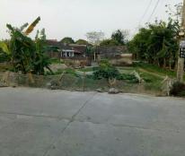 Bán gấp mảnh đất xã Yên Thắng, huyện Yên Mô, Ninh Bình giá cực rẻ