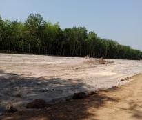 Đất Nền Gía Rẻ Khu Công Nghiệp Minh Hưng 3 - Chơn Thành Bình Phước Chỉ 279tr/nền - LH:0907428445