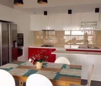 Cho thuê căn hộ cao cấp Happy Valley, 20tr/th. Lh 0919049447