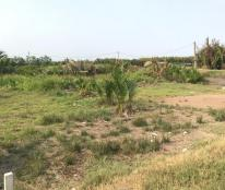 175m2 đất thổ cư mặt tiền đường Gò me Nhà Bè giá 1.45 tỷ (8tr/m2) SHR