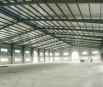 Cần cho thuê nhà xưởng tại Thanh Hóa, Nga Sơn 3010m2 khuôn viên 15100m2