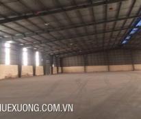 Cho thuê kho chứa hàng tại Nga Sơn, Thanh Hóa DT 1005m2