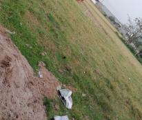 Bán đất tại Đường Bình Tiền 2, Xã Đức Hoà Hạ, Đức Hòa, Long An diện tích 90m2 giá 700 Triệu