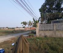 Bán đất công tại Bình hữu 2, Cách tỉnh lộ 824 500m, diện tích 2444m2