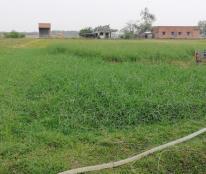 Bán đất tại Xã Đức Hoà Đông, Đức Hòa, Long An diện tích 2200m2 giá 4,5 Tỷ