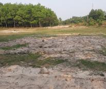 Chơn Thành Bình Phước: Đất nền giá rẻ,chỉ 250 triệu/nền