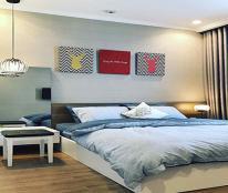 Căn hộ 2 phòng ngủ, chuyển nhượng chỉ với giá gốc chỉ 3,8 tỷ tại Vinhomes Central Park