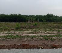 Đất nền KDC -KCN Minh Hưng Chơn Thành giá rẻ 350tr\nền.Lh:0935.611,956