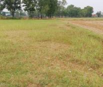 Bán đất làm kho tại Đường 824, Xã Đức Hoà Thượng, Đức Hòa, Long An diện tích 2444m2 giá 5 Tỷ
