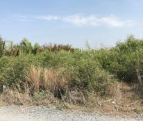 1800m2 đất vườn Huyện Nhà Bè HCM giá 990 triệu