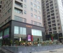 Cho thuê chung cư Meco 102 Trường Chinh, 90m2, nội thất cơ bản, giá 10.5 triệu/tháng