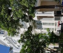 Cho thuê nhà phố nguyên căn làm nhà hàng, cafe khu Hưng Gia, Hưng Phước, Phú Mỹ Hưng