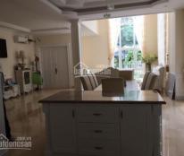 Cho thuê biệt thự Hưng Thái 1 Phú Mỹ Hưng, quận 7, nhà đẹp, giá rẻ nhất thị trường. LH: 0919552578