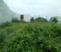 Bán đất xóm họ Đào ấp Bình Tiền 2, xã Đức Hòa Hạ, huyện Đức Hòa giá 1,5 tỷ