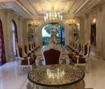 Cho thuê biệt thự cao cấp Chateau, Phú Mỹ Hưng, Quận 7, TP. Hồ Chí Minh