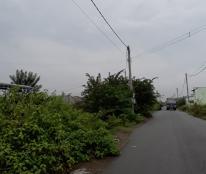 Bán đất trục đường Tư Lửa xã Đức Hòa Hạ, huyện Đức Hòa, tỉnh Long An