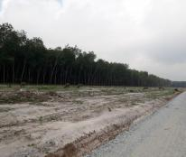 Đất nền chính chủ giá rẻ Chơn Thành Bình Phước 330tr\nền.Lh:0935.611.956