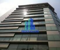Bán Căn Hộ DV Đường Mạc Đỉnh Chi, P. Đa Kao, Q1. DT:4.2x28m 1H 7L giá 65 tỷ HĐ Thuê 250tr/th.
