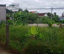 Bán đất chính chủ Thôn Nam Thượng Xã Phú Thượng