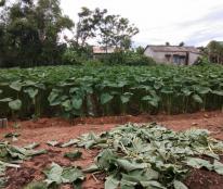 Bán đất tại khu quy hoạch Chiết bi, Phú Vang; DT 158 m2, giá 7,2 tr đ/m2.