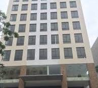 Bán Building 9 Tầng, 300m2, Thu Nhập 500 Triệu/Tháng Phường 2, Tân Bình.
