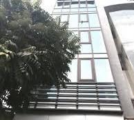 Bán building MT ngay Nguyễn Trãi, Quận 1, DT 8.3x20m, 8 lầu, HĐ thuê 250tr/th, giá 65 tỷ