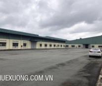 Cho thuê kho, nhà xưởng, đất tại Bỉm Sơn, Thanh Hóa diện tích 3015m2, giá 30 nghìn/m2/tháng