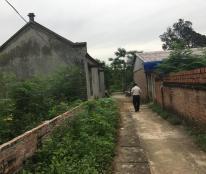 Cần bán 1000m2 đất thổ cư Phú Cát, Quốc Oai, Hà Nội