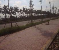 Bán đất khu đô thị Thăng Long Phố Nối