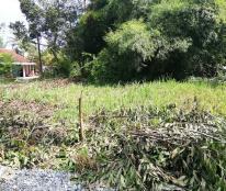 Chỉ 195 triệu có ngay lô đất chính chủ sổ hồng riêng thổ cư 100% tại An Hòa, Trảng Bàng, Tây Ninh
