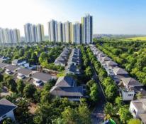 Nhượng lại căn đơn lập Vườn Tùng dự án Ecopark, giá 43 triệu/ m2