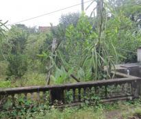Bán đất vườn, nhà tại quê xã Nguyên Lý, huyện Lý Nhân, tỉnh Hà Nam