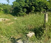 Chính chủ cần bán nhanh lô đất nền khu quy hoạch Phú Thượng, Phú Vang
