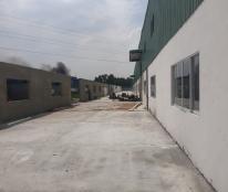 Cần cho thuê nhiều kho, nhà xưởng mới xây (1.200m2, 1.600m2, 2.800m2), khu vực tỉnh Long An