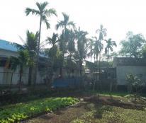 Cần chuyển nhượng đất ở tại xã Ngọc Liệp, Quốc Oai, Hà Nội, DT 125m2, giá 6 triệu/m2