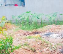Cần bán 3 lô đất ngay trung tâm thành phố giá phù hợp để an cư lập nghiệp