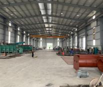 Chính chủ cho thuê kho xưởng tại khu vực Ecopark Văn Giang, Hưng Yên