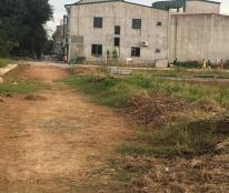 Bán lô đất quy hoạch giá rẻ xóm Trung Thành, Xã Hưng Đông, TP Vinh