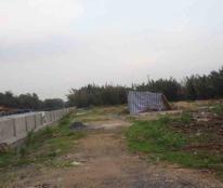 Bán đất thổ cư tại đường Trần Văn Giàu, xã Phạm Văn Hai, Bình Chánh, TP. HCM, DT 100m2