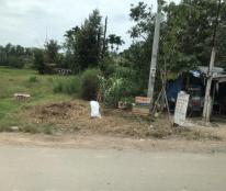 Không có khả năng trả nợ ngân hàng bán gấp đất 498m2 ngang 13m mặt tiền đường Nguyễn Cửu Phú