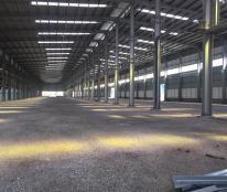 Cho thuê kho xưởng cụm công nghiệp Minh Đức, Mỹ Hào, DT 2.500 - 10.000m2