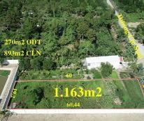 Bán nền 1.163m2 mặt tiền đường Chí Sinh - Tân Phú - giá 3,2 triệu/m2 - LH 0918436257 Mr. Long