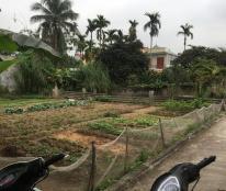 Bán đất thôn Vân Tra, An Đồng, An Dương, Hải Phòng, 300m2, giá 4.5tr/m2, LH 0936825325