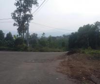 Chính chủ cần bán mảnh đất ngay sát VinCity, gần KĐT Phú Cát, cách Đại lộ Thăng Long 1,5 km