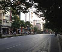 MP Kim Mã, Vỉa Hè Rộng, Kinh Doanh đỉnh. 66m*6*4,5. 25,5 tỷ.