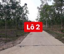 Cần bán gấp 2 lô đất tại Đồng Nai